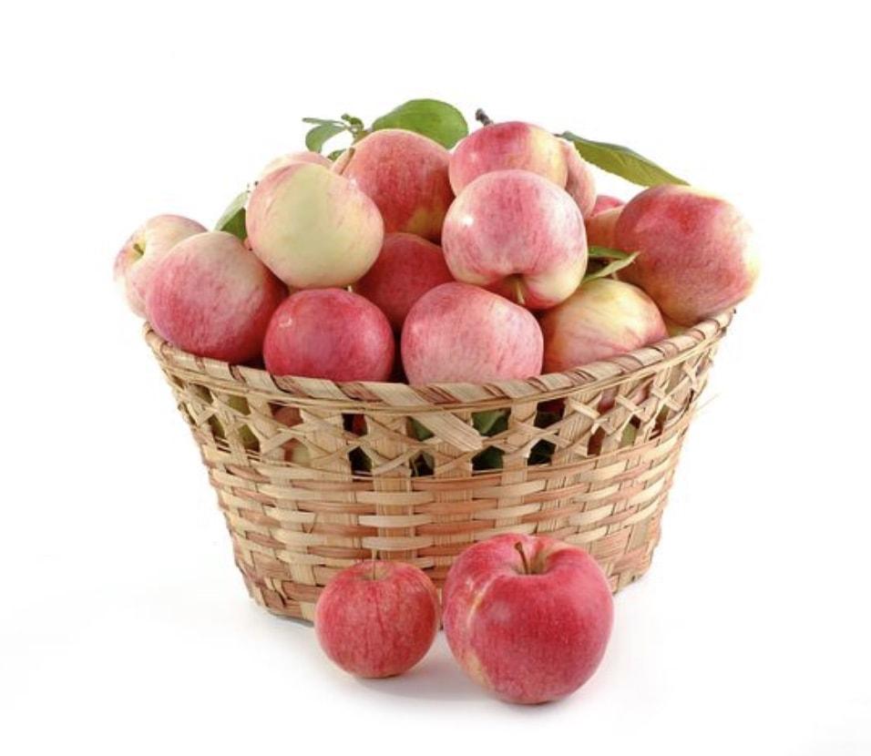 mono-diet pommes